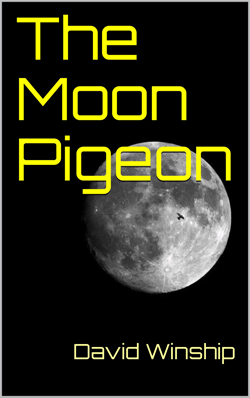 The Moon Pigeon