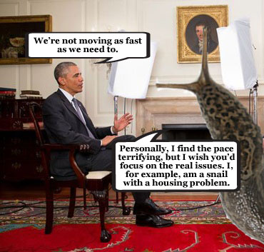 Obama stands up for wildlife